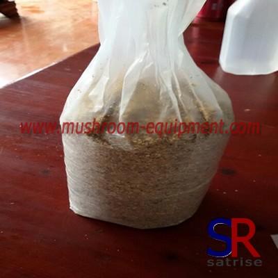 China sawdust mushroom spawn bag