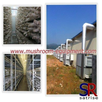 Mushroom climate control machine for small rooms