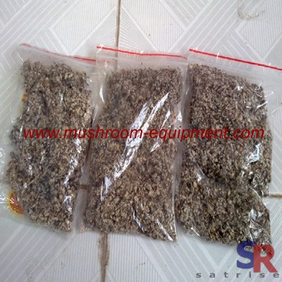 cottonseed hull for mushroom grow