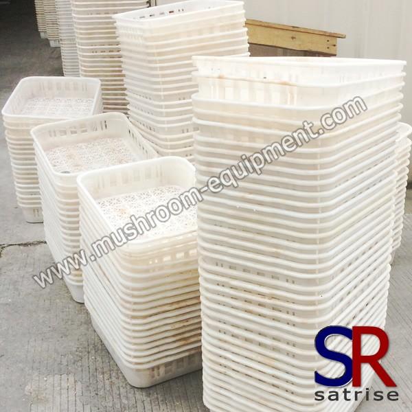 mushroom plastic crate for mushroom cultivation