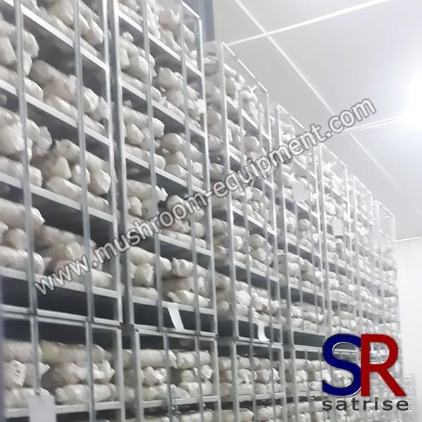 mushroom rack/mushroom shelf