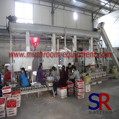 High efficiency mushroom cultivation filler