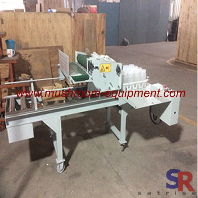 cap removing machine for mushroom cultivation