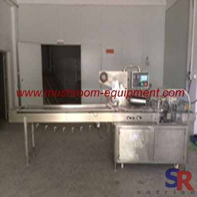 fresh button mushroom packing machine