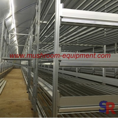 Adjustable Button Mushroom Storage Rack Factory