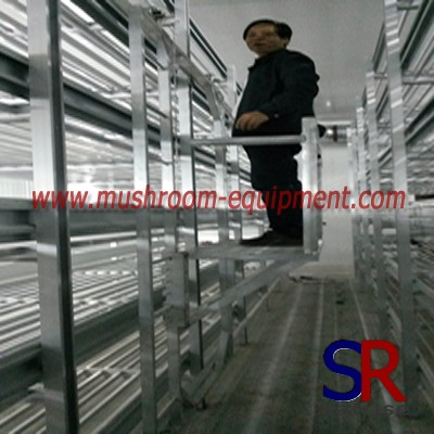 Good quality metal rack for mushroom
