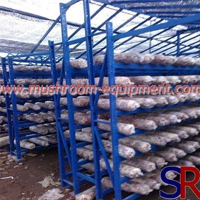 Metal Adjustable Mushroom Growing Wire Shelf