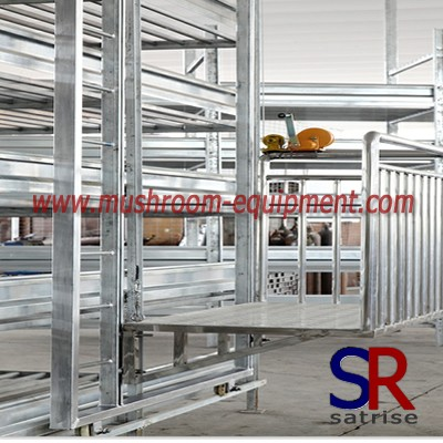 Mushroom Warehouse storage steel Mold racks