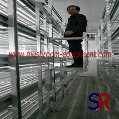 mushroom cultivation widely used mushroom rack